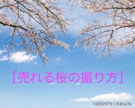 pixta_13232079_S_2