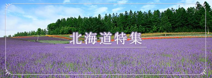 今買うべき北海道素材特集!〜観光・旅行・料理PRに使える素材集めました〜