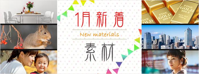 【★スタッフおすすめ!】1月販売開始の新着素材 / 週間素材ランキング