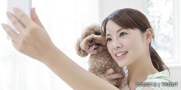 スマートフォンで写真を撮る女性とトイプードル