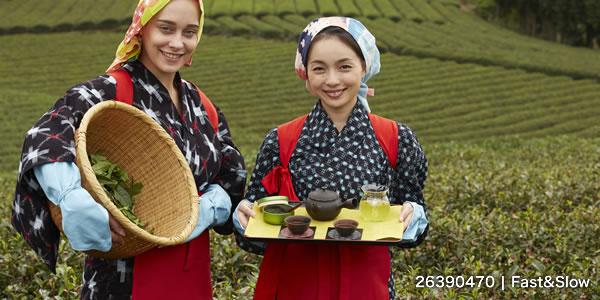 日本人と外国人の茶娘 ポートレート