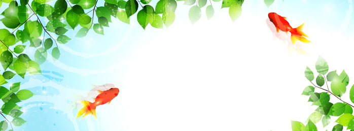 金魚 葉 暑中見舞い 背景